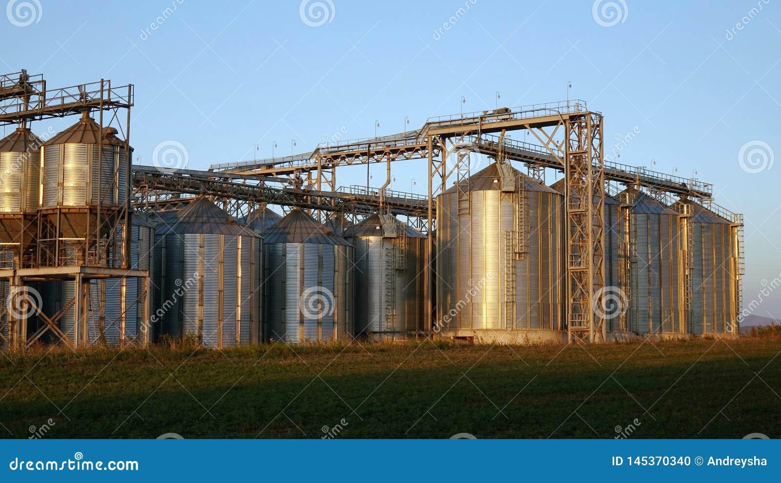 Attrezzatura di preparazione della birra del mestiere in serbatoi metallici della fabbrica di birra