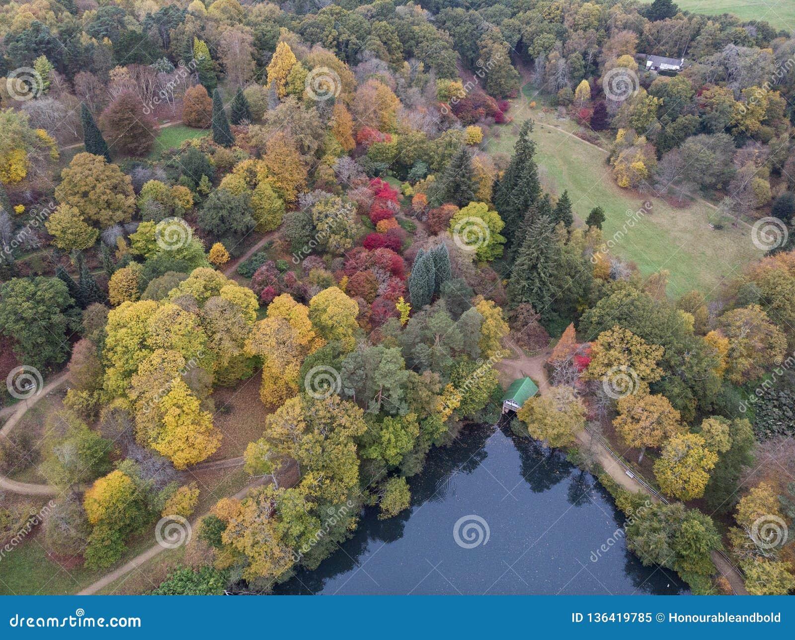Aturdir imagen aérea del paisaje del abejón del paisaje vibrante colorido imponente del campo de Autumn Fall English