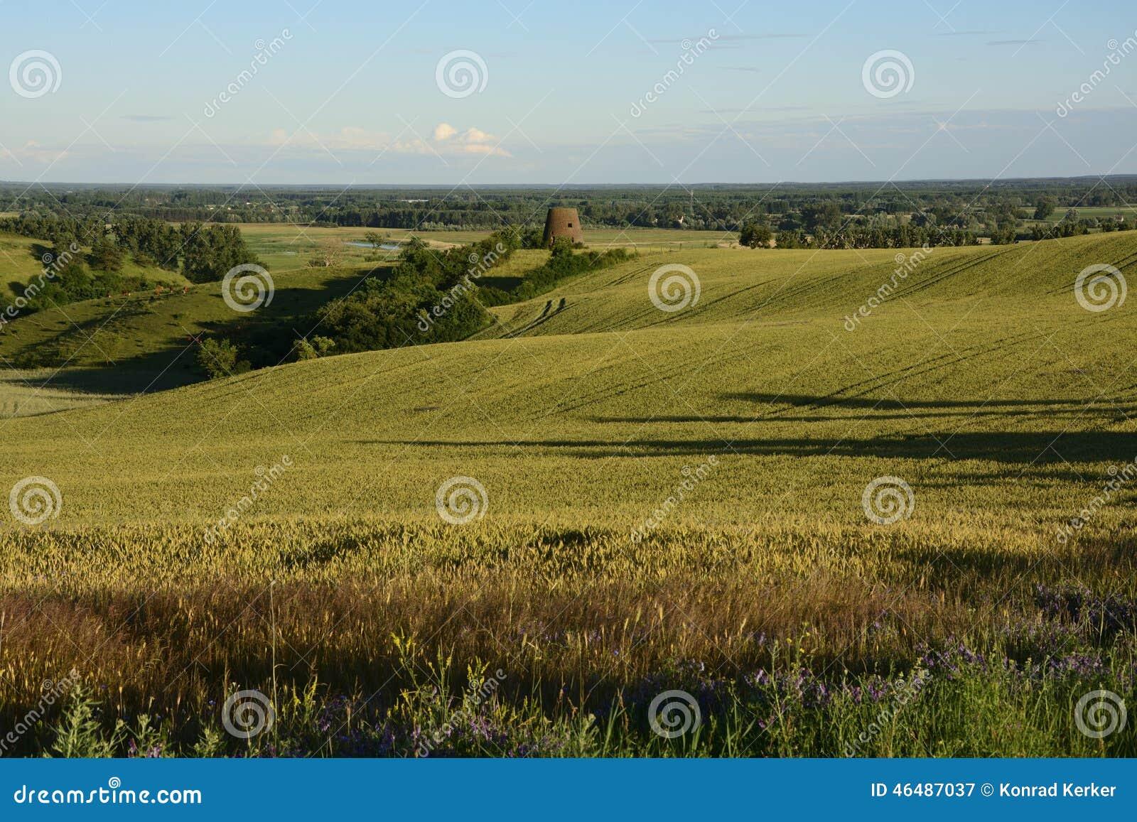Außerhalb der Stadt - ländliche Landschaft - eine alte Windmühle auf dem Feld