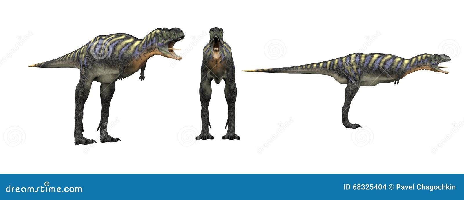 Aucasaurus De dinosaurus isoleert op wit