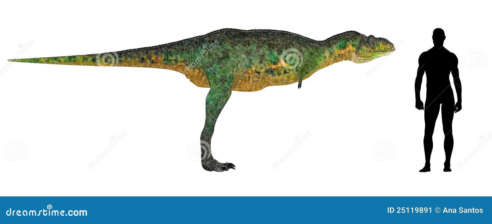 Aucasaurus Size Comparison