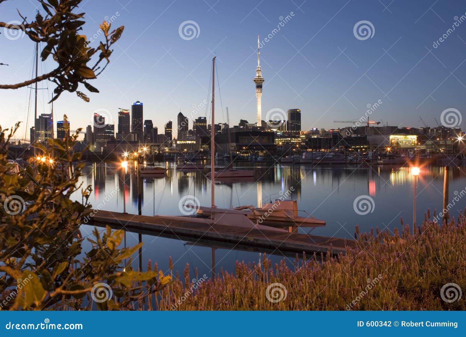 Auckland Dawn
