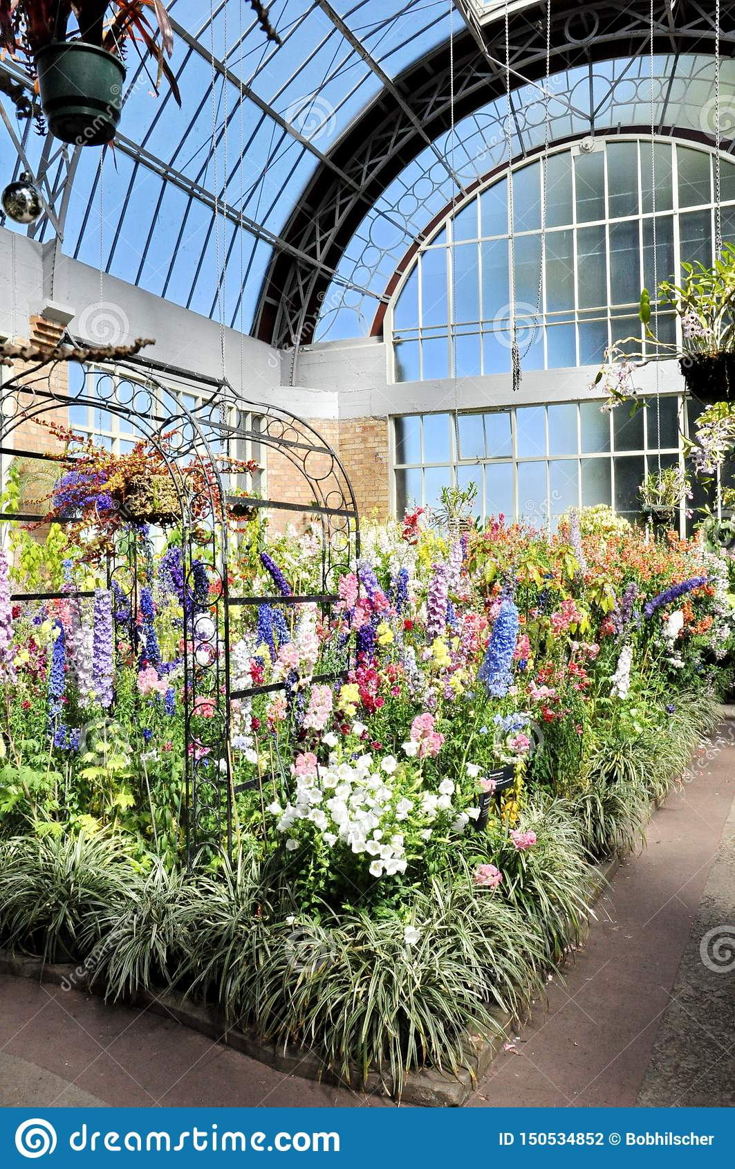 View Of Flowers Growing Inside The Tropical Hot House At The ... Plant Hot House Winter on winter potted plants, winter shade plants, winter blooming plants, winter porch plants, winter container plants, winter hibiscus, winter yard plants, winter deck plants, winter perennial plants, winter interest plants, winter flowering plants, winter fragrant plants, winter house landscaping, winter planter plants, winter house art, winter hardy plants, winter outdoor plants, winter house cookies, great winter plants, winter patio plants,