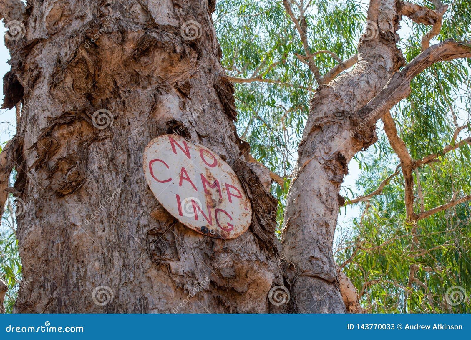 Aucun camping se connecter un arbre d écorce de papier en Australie