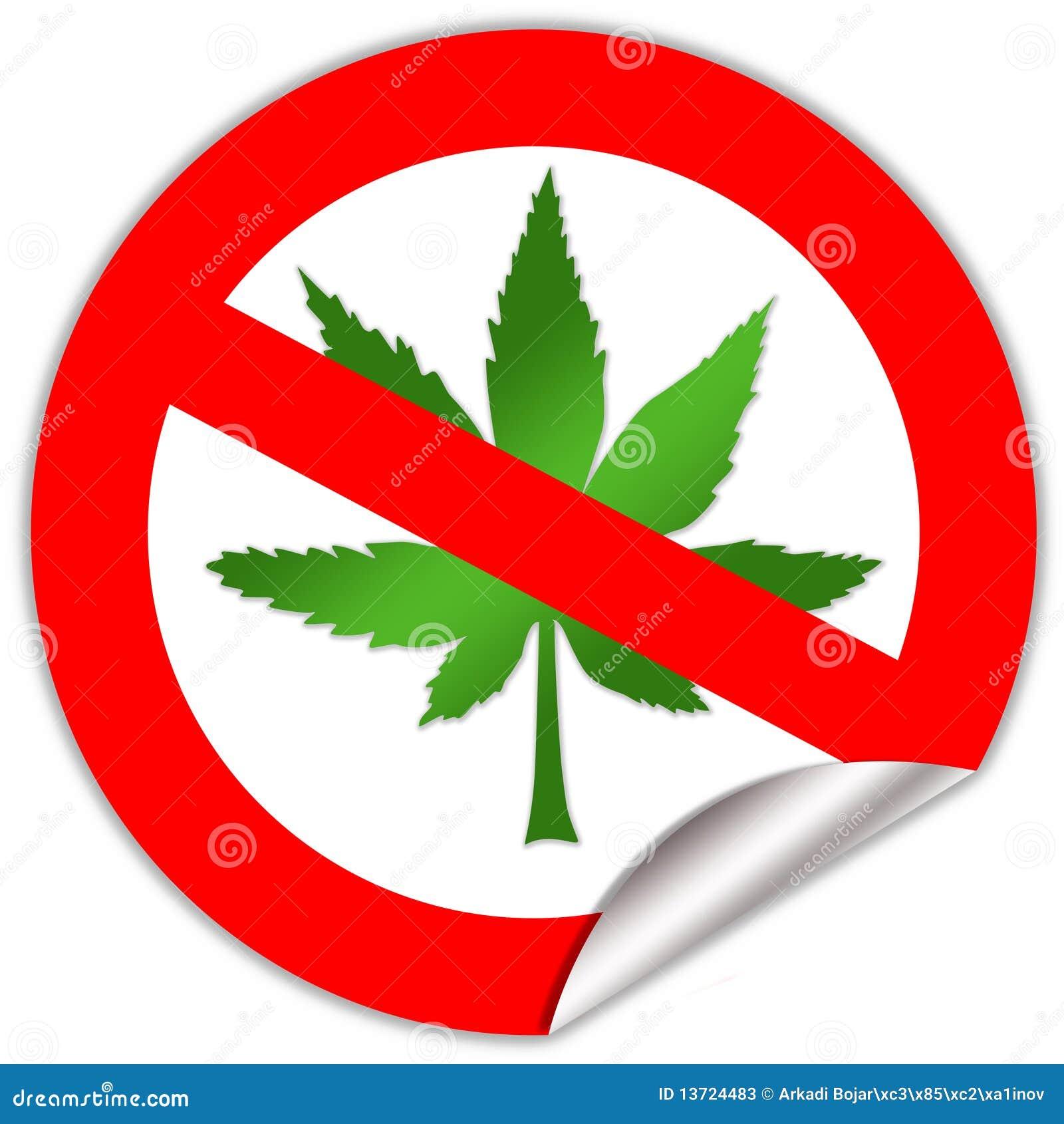 Aucune marijuana