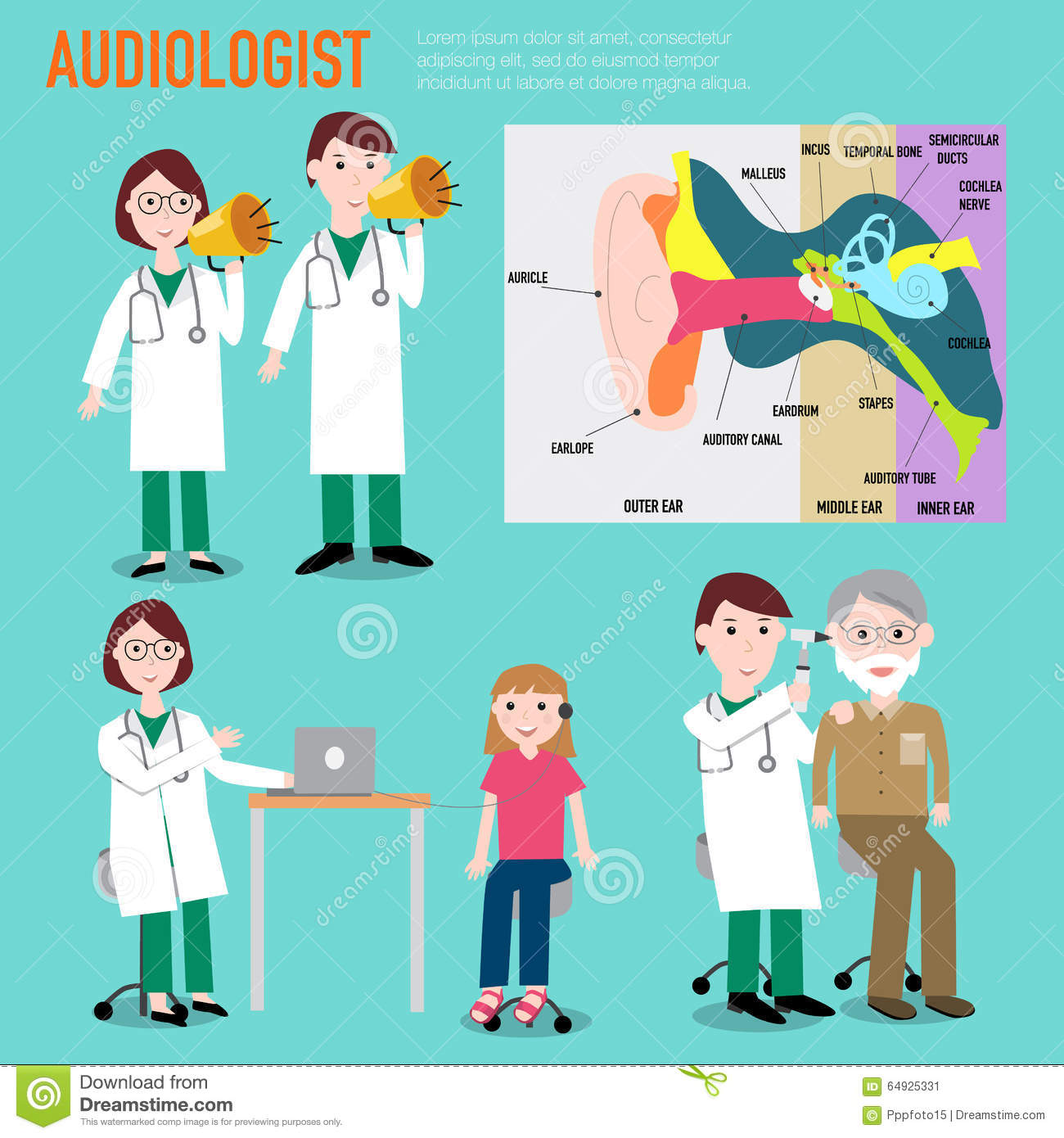 Audiologist Audiology Anatomy Of Ear Vector Infographic Stock
