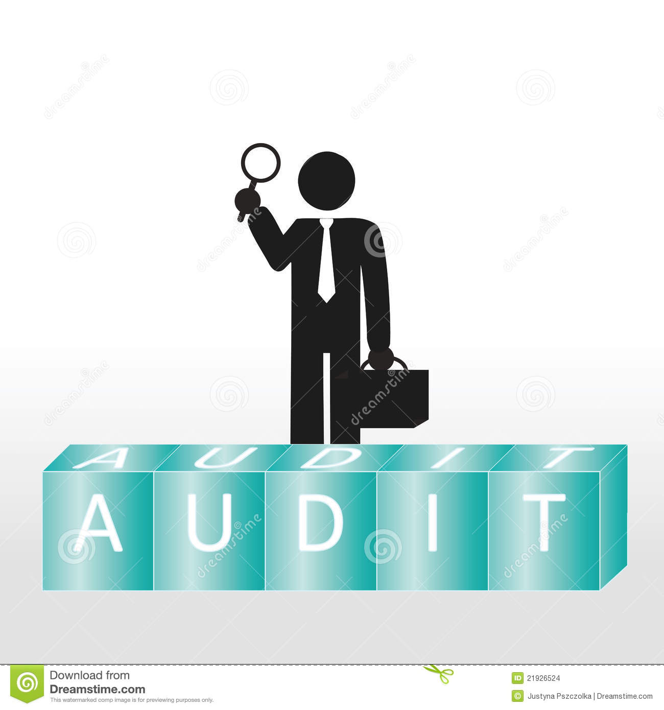 Audit Stock Images Image 21926524