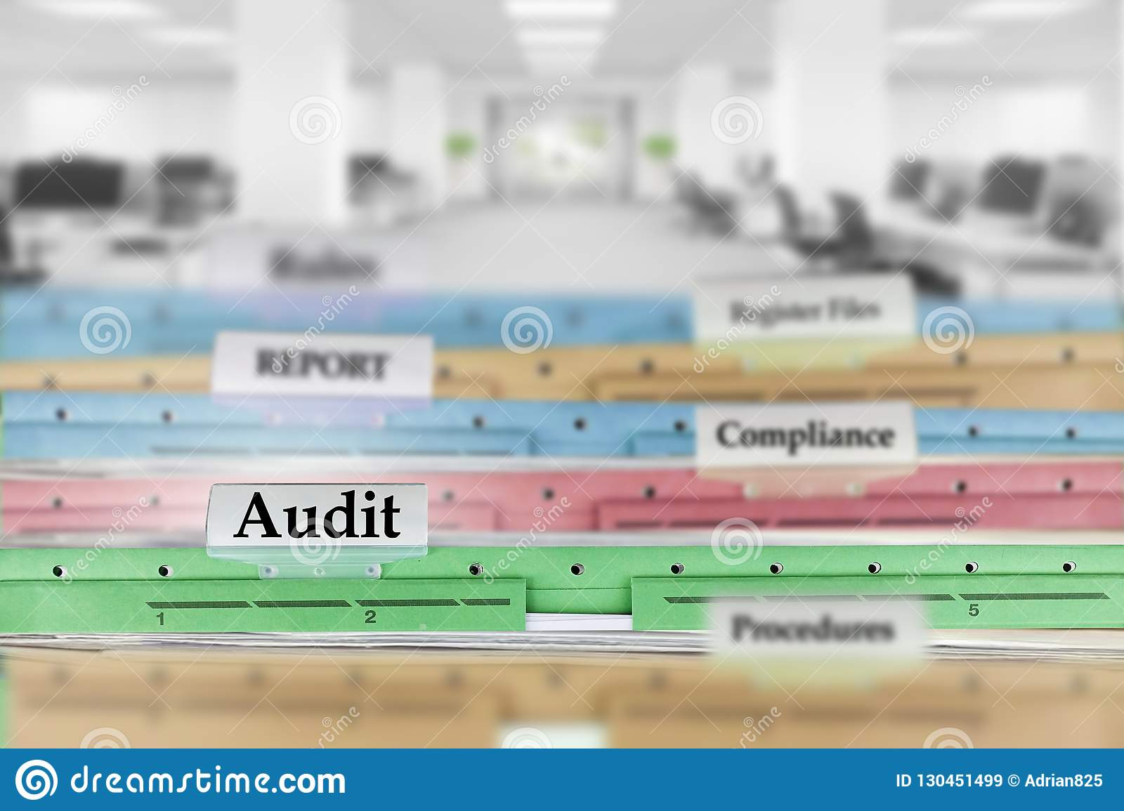 Audit report files and other documents at the office