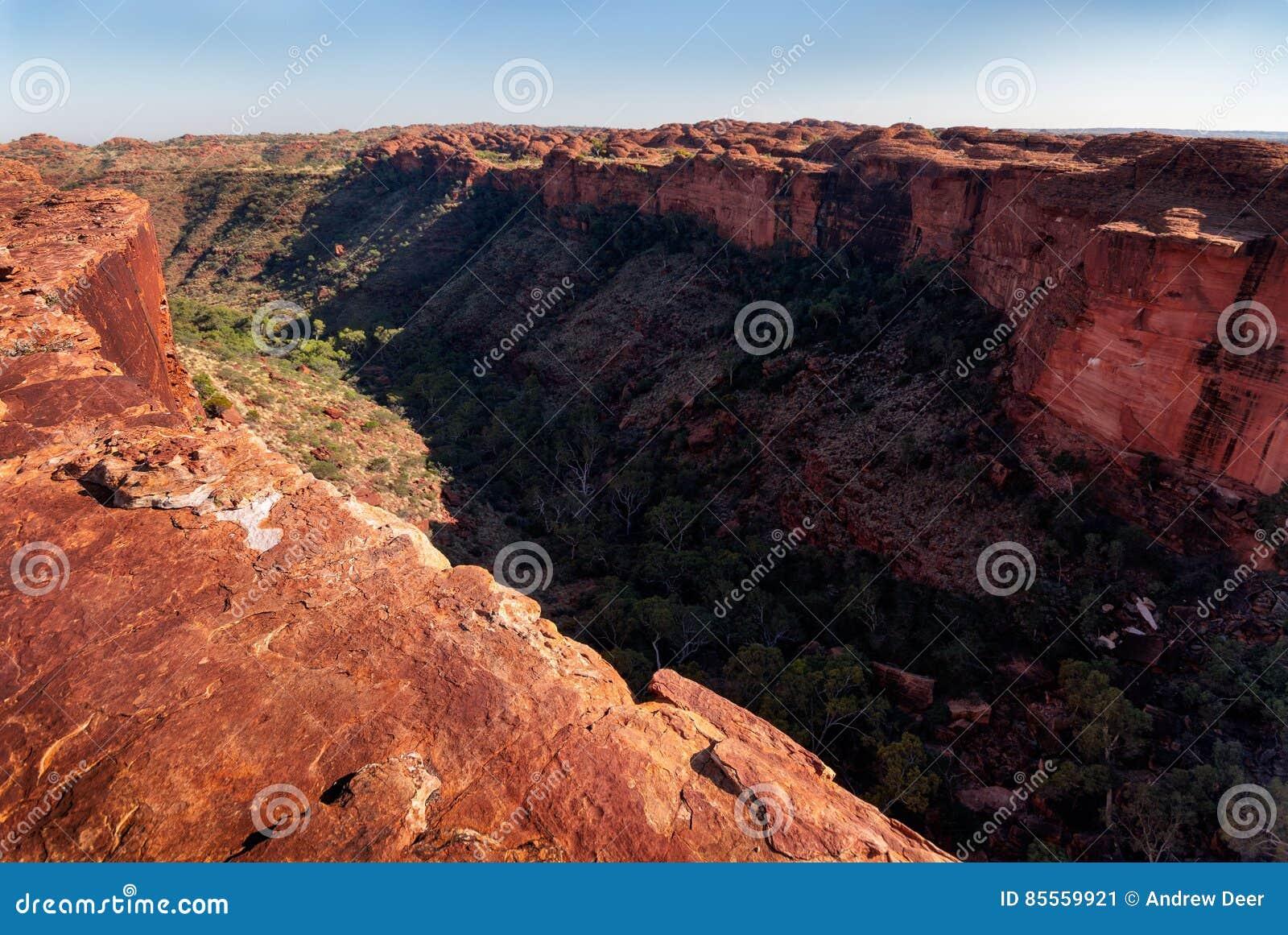 Auf dem Klippenrand Könige Canyon, der unten die Schlucht untersucht
