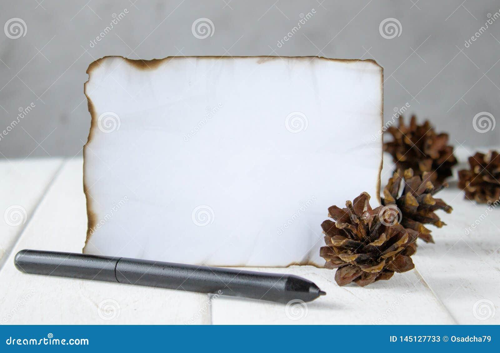 Auf wei?en h?lzernen Brettern ein Blatt Papier gebrannt an den R?ndern, Waldkegel, ein schwarzer Stift an den R?ndern Lassen des