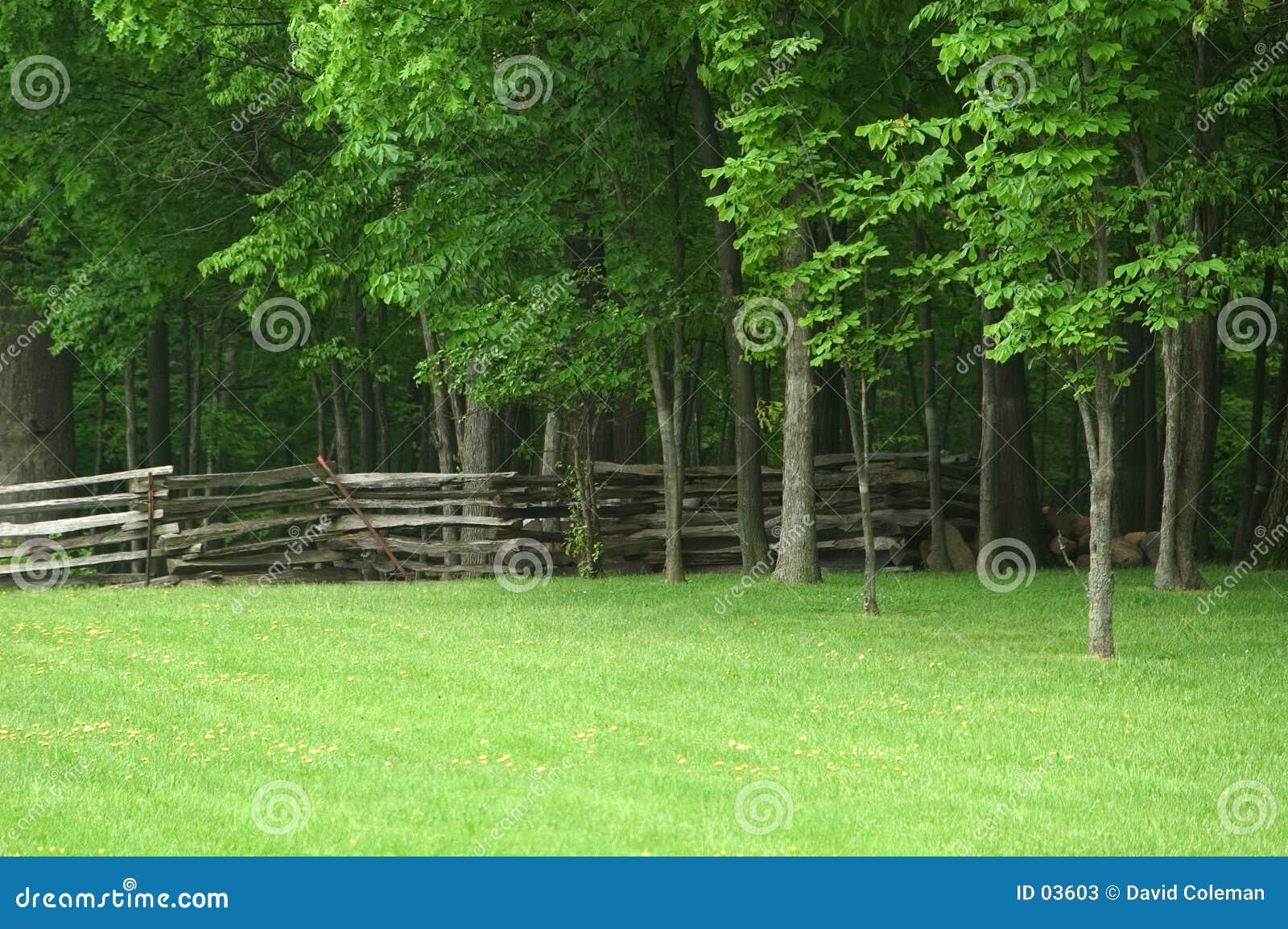 Aufgeteilte Schienen-Zaun Ohio