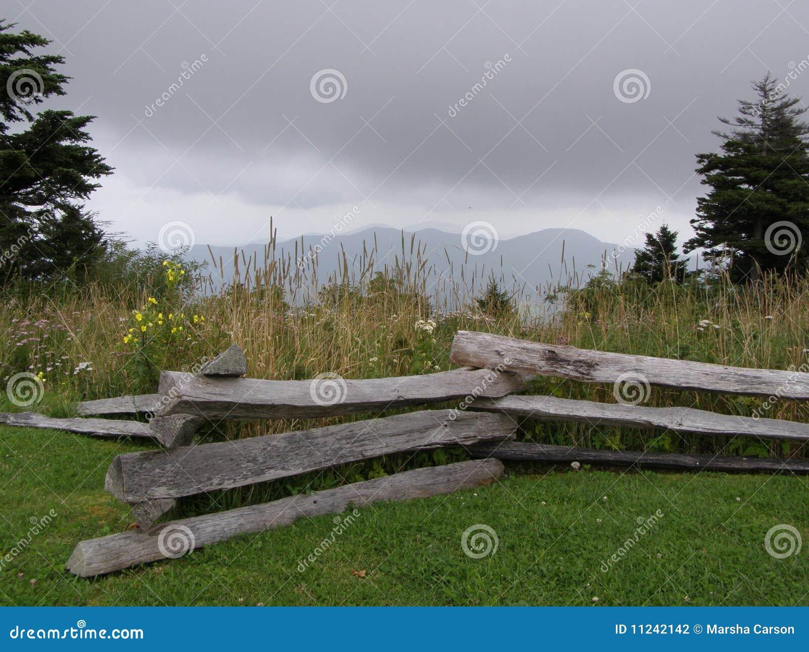 Aufspalten-Schiene Zaun und Wildflowers im blauen Ridge