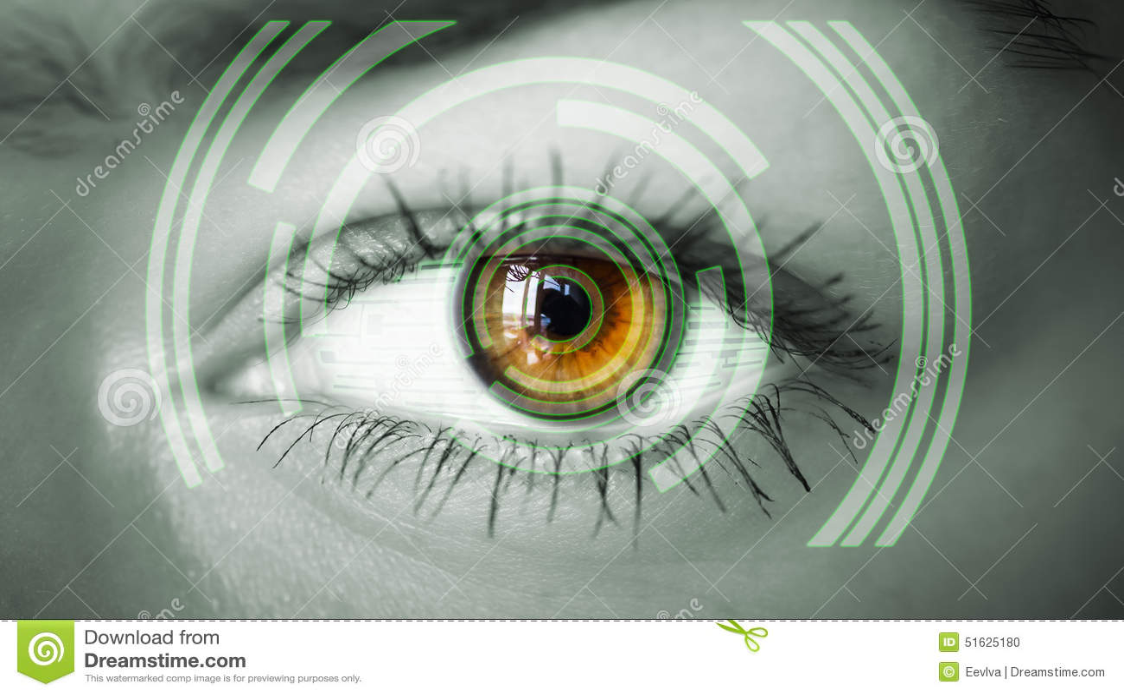 Auge, das numerische Information ansieht