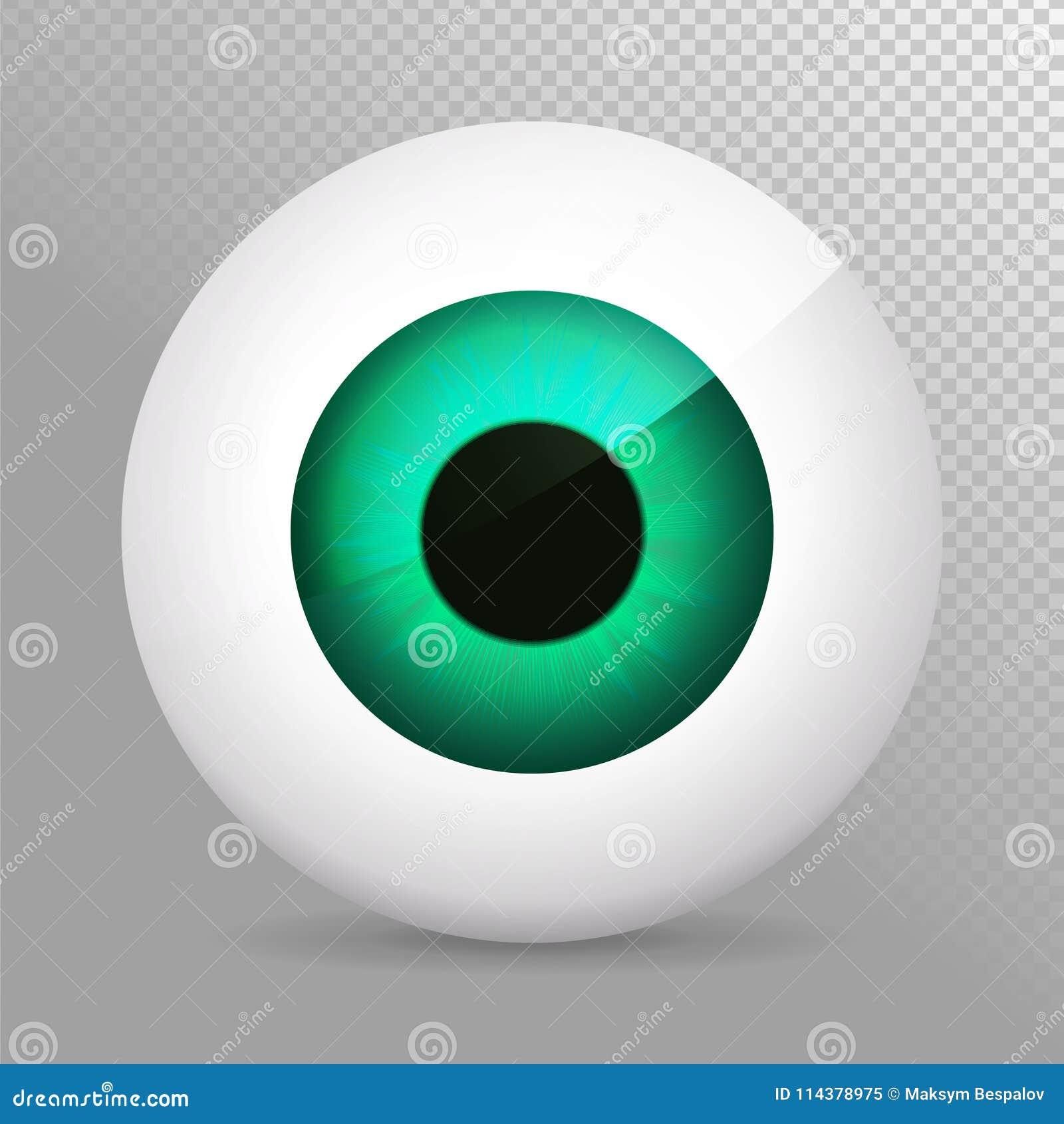 Auge, Grün Realistische Augapfel-Vektorillustration Des Grüns 3d ...