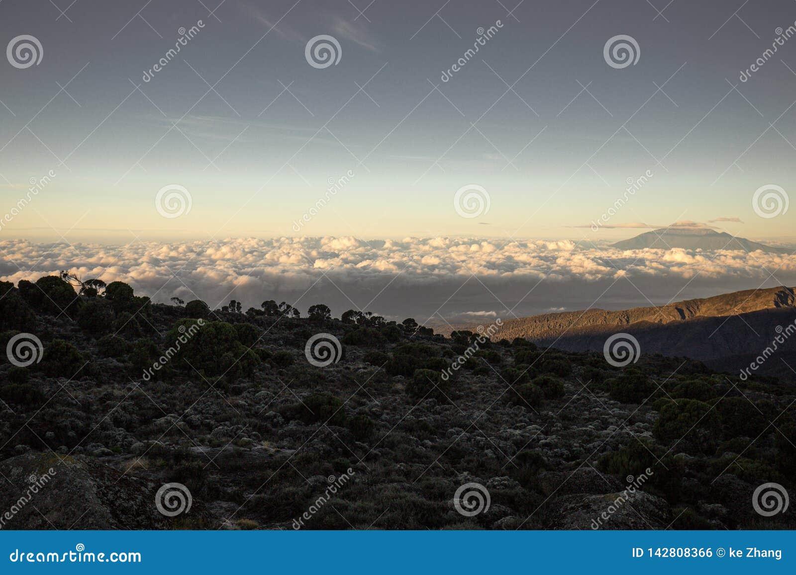 Augmentez le Mt Kilimanjaro Tanzanie