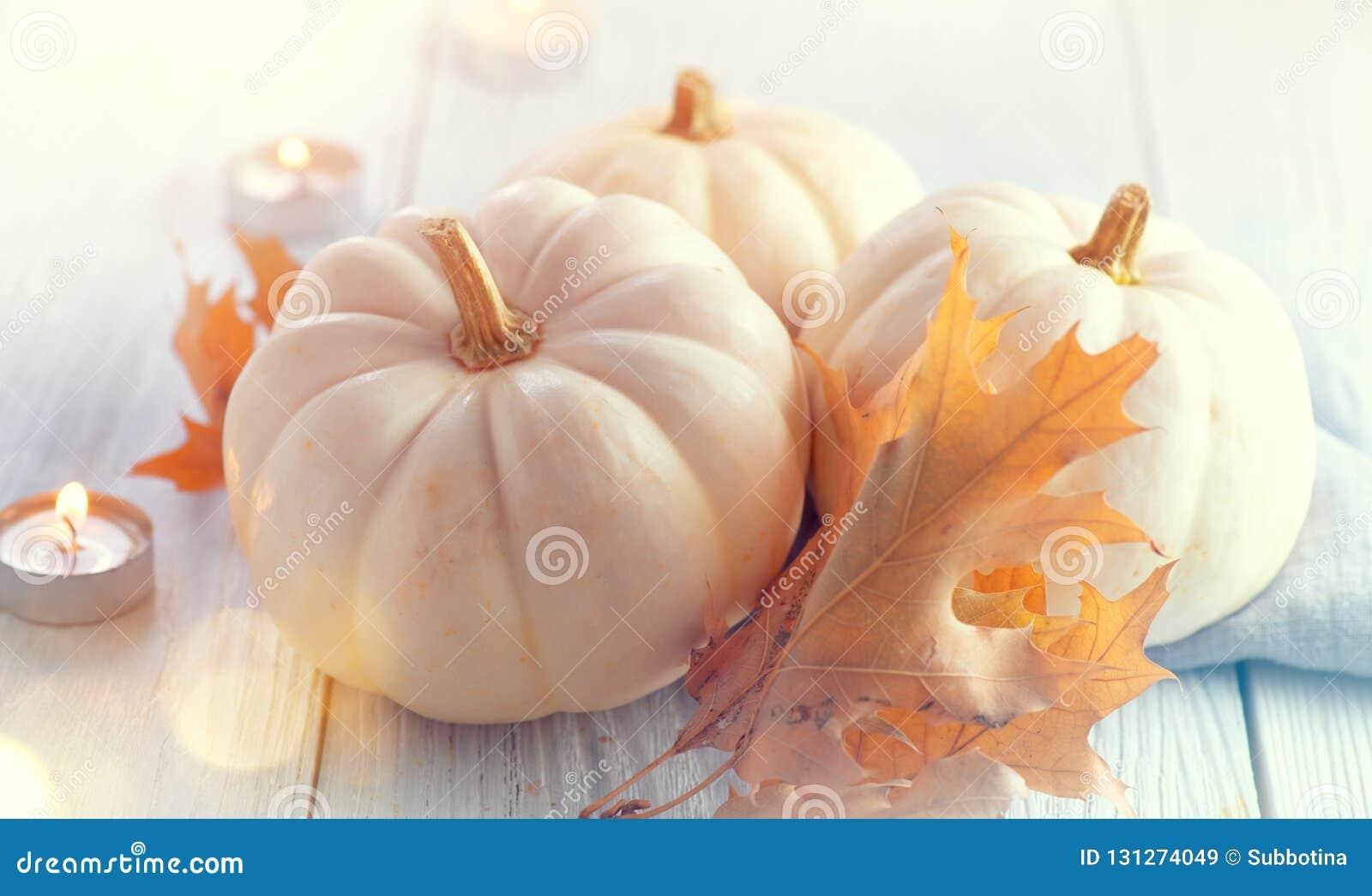 Aunumnbakgrund låter vara livstid över still tacksägelse trä Ferieplats Trätabellen som dekoreras med pumpor, hösten lämnar