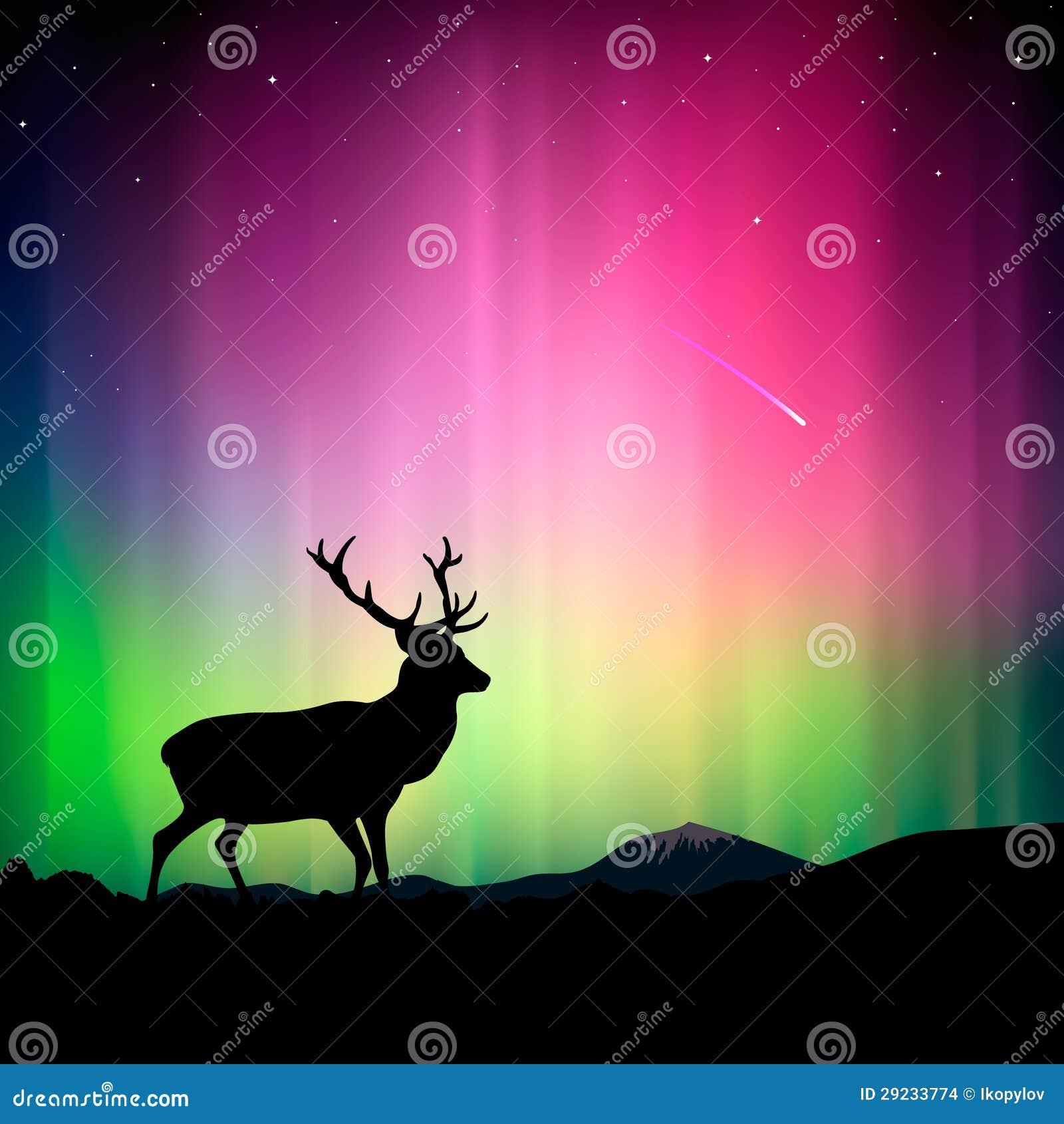 Download Aurora Boreal Com Um Cervo No Primeiro Plano Ilustração do Vetor - Ilustração de bonito, luzes: 29233774