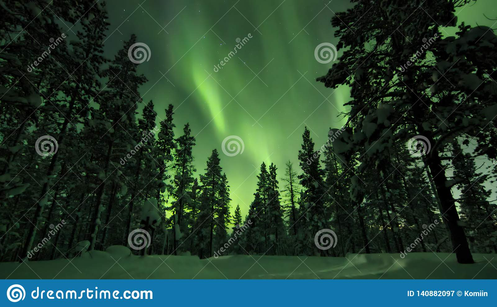 Aurora borealis au-dessus des arbres dans la forêt finlandaise Saariselka