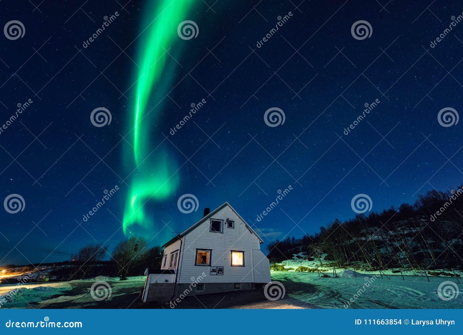 Aurora borealis da aurora boreal sobre o turista que acampa em ilhas de Lofoten, Noruega Paisagem do inverno da noite