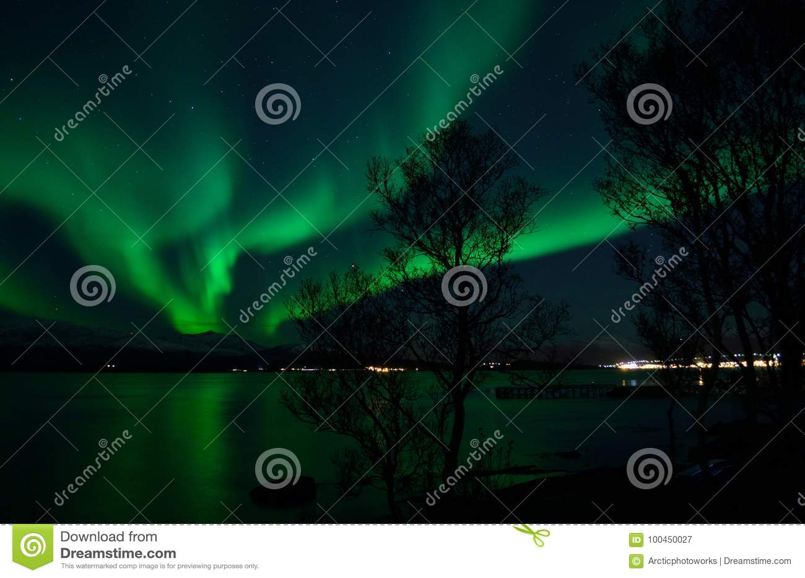 Aurora borealis forte fantástico sobre o fiorde e a montanha frios