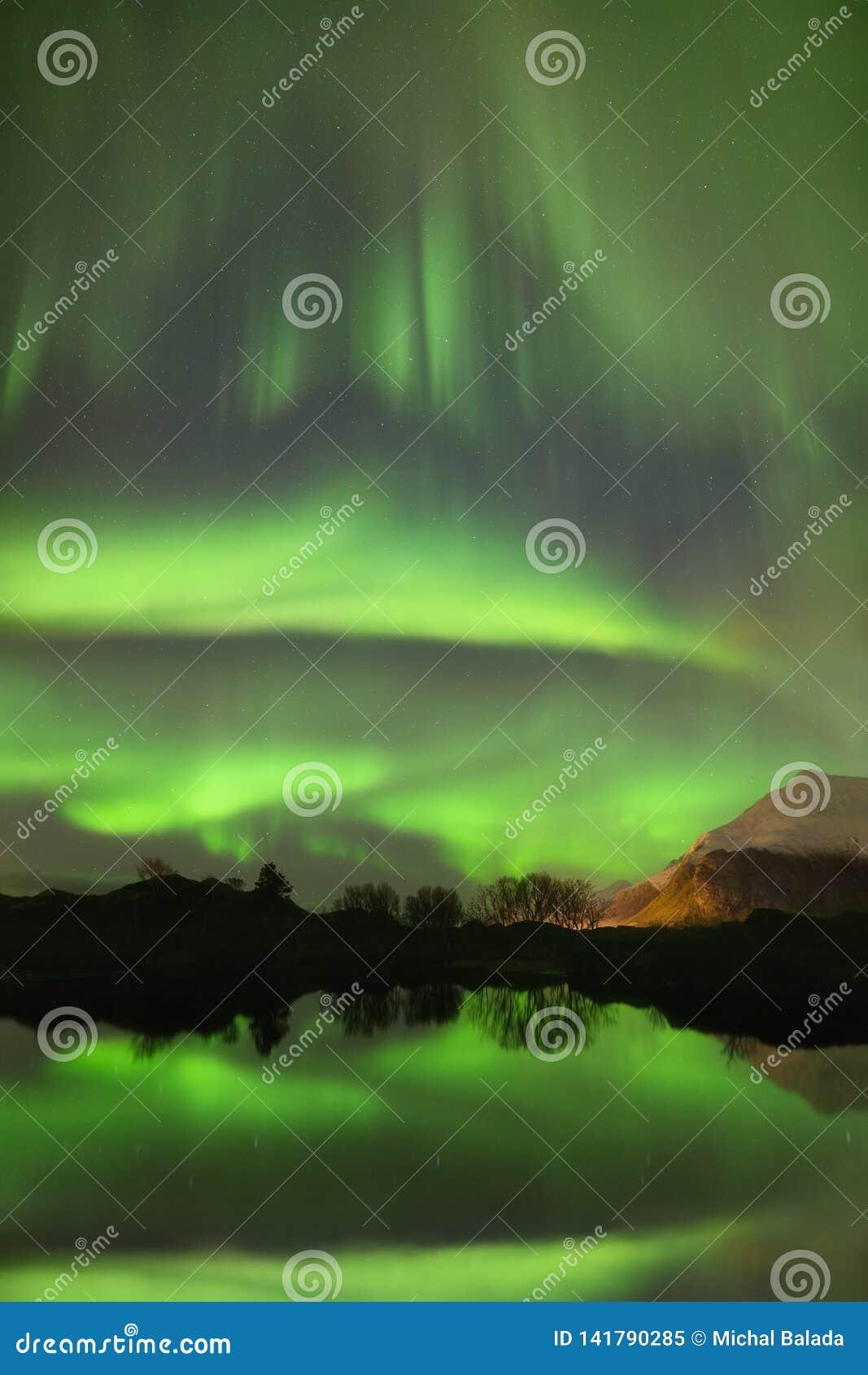 Aurora Borealis, indicatori luminosi nordici Fiordo scenico sulle isole di Lofoten, Reine, Norvegia