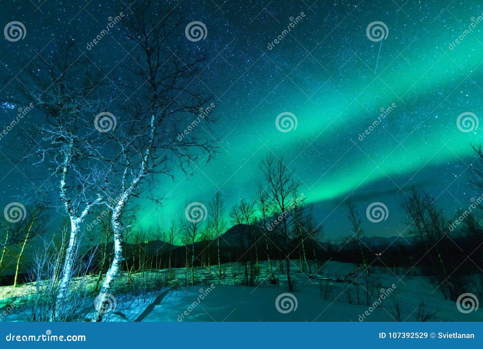 Aurora Borealis Northen tänder fenomen