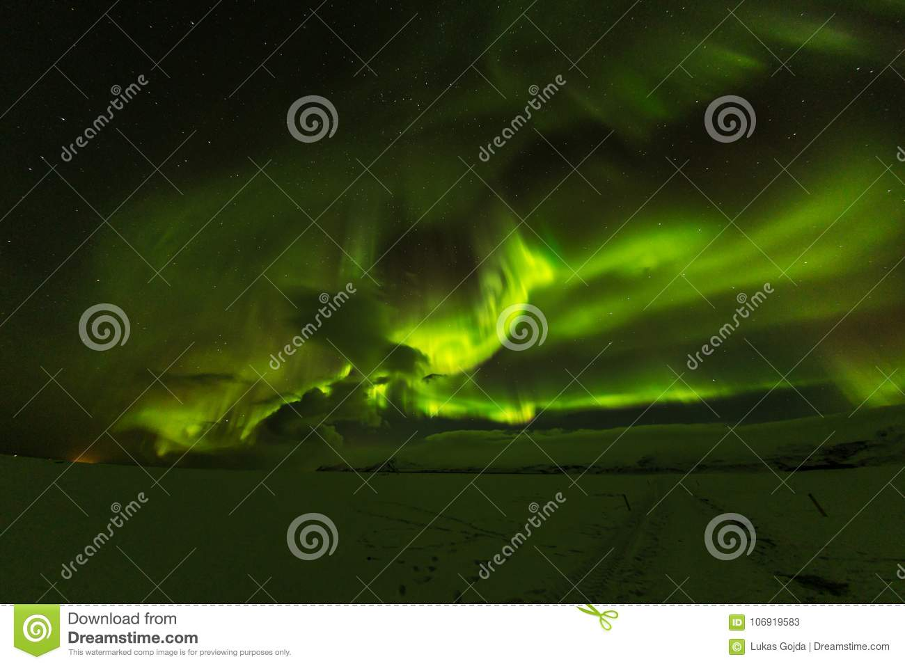 Aurora borealis, northern lights in Iceland during winter.