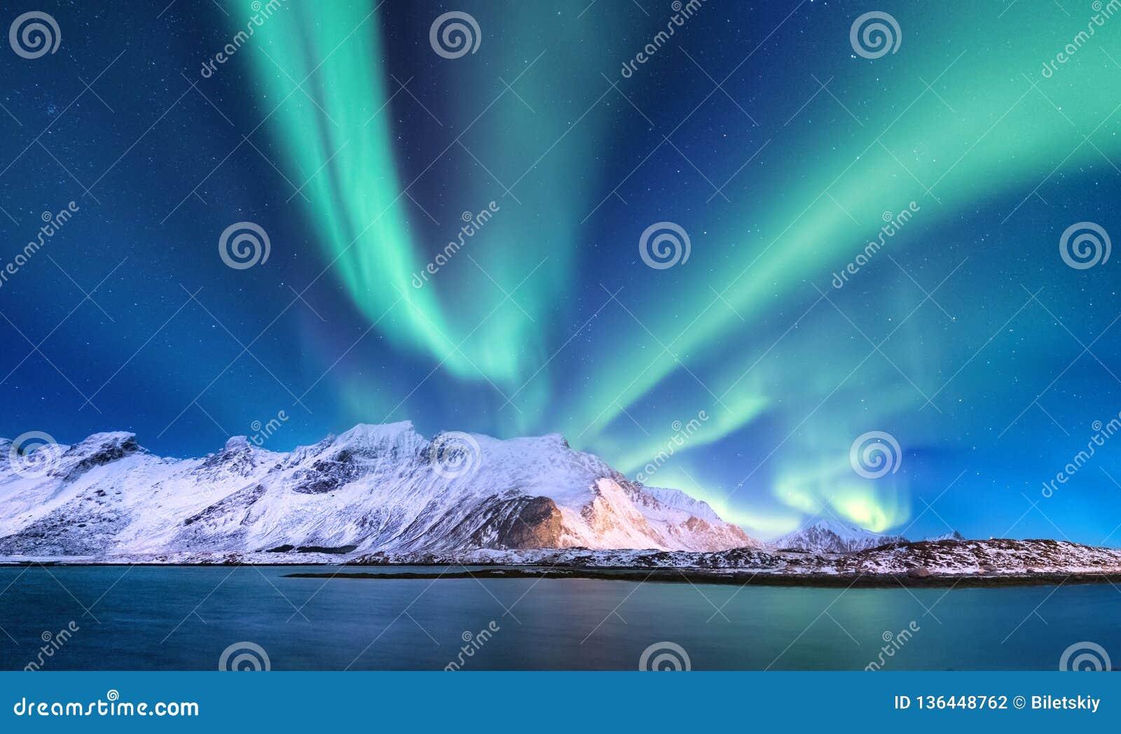 Aurora borealis sur les îles de Lofoten, Norvège Lumières du nord vertes au-dessus des montagnes et du rivage d océan Paysage d h