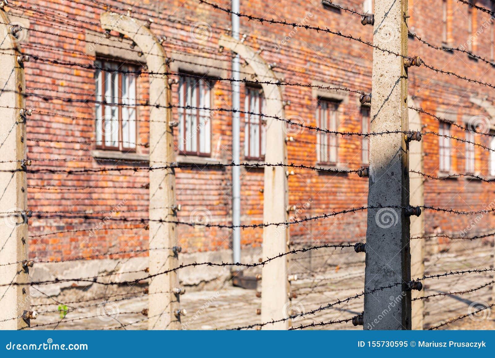 AUSCHWITZ-BIRKENAU, POLAND - AUGUST 12, 2019: Holocaust Memorial Museum. Separation barbed wire in prison camps. Part of Auschwitz