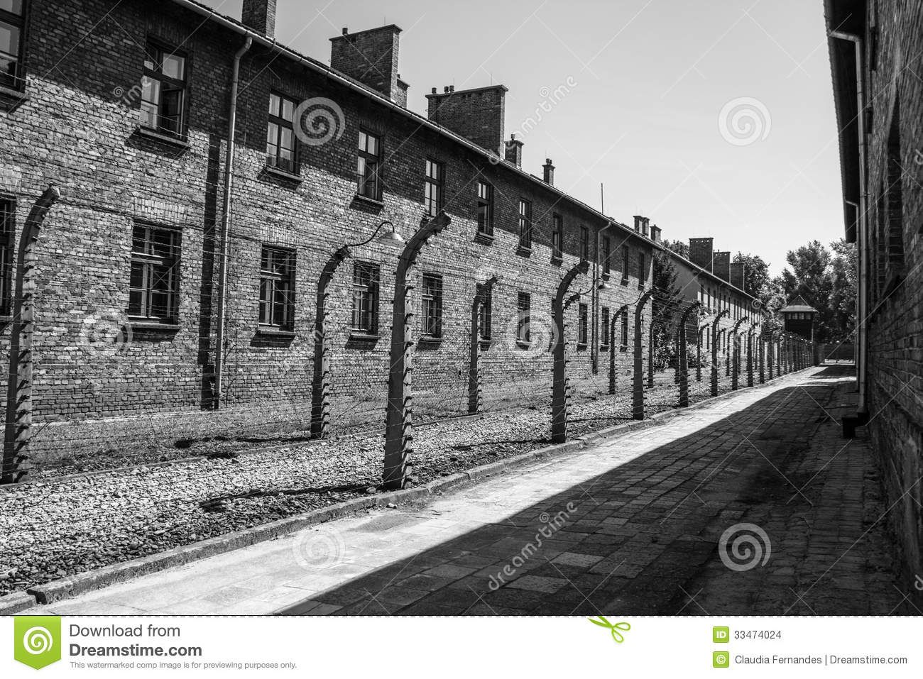 auschwitz the overview of a concentration Images and videos for auschwitz (concentration camp, poland) encyclopædia britannica start your free trial  overview of auschwitz concentration camp, poland .