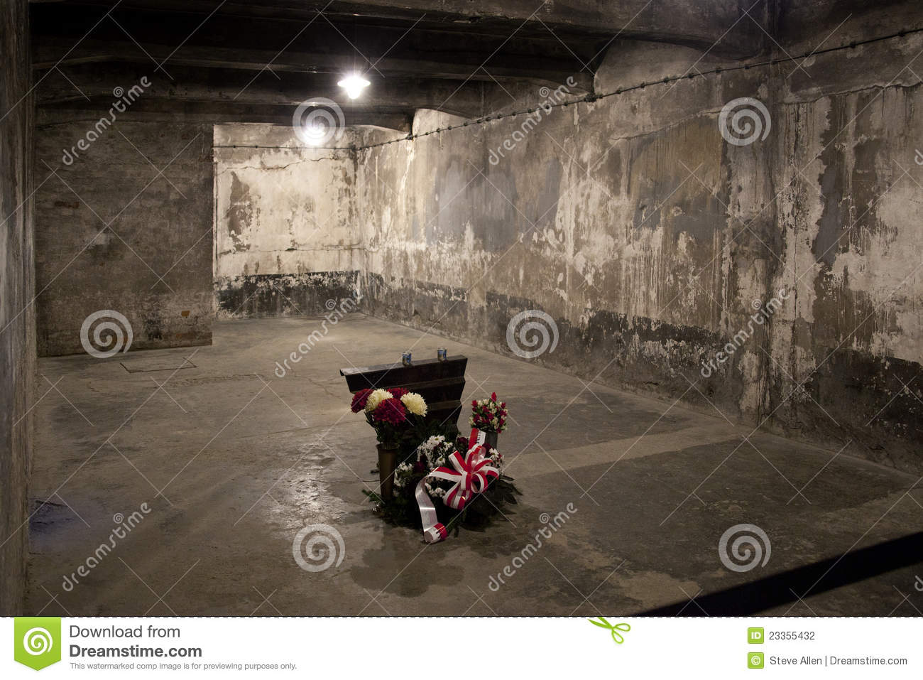 Auschwitz gas chamber poland editorial photography for Auschwitz chambre a gaz