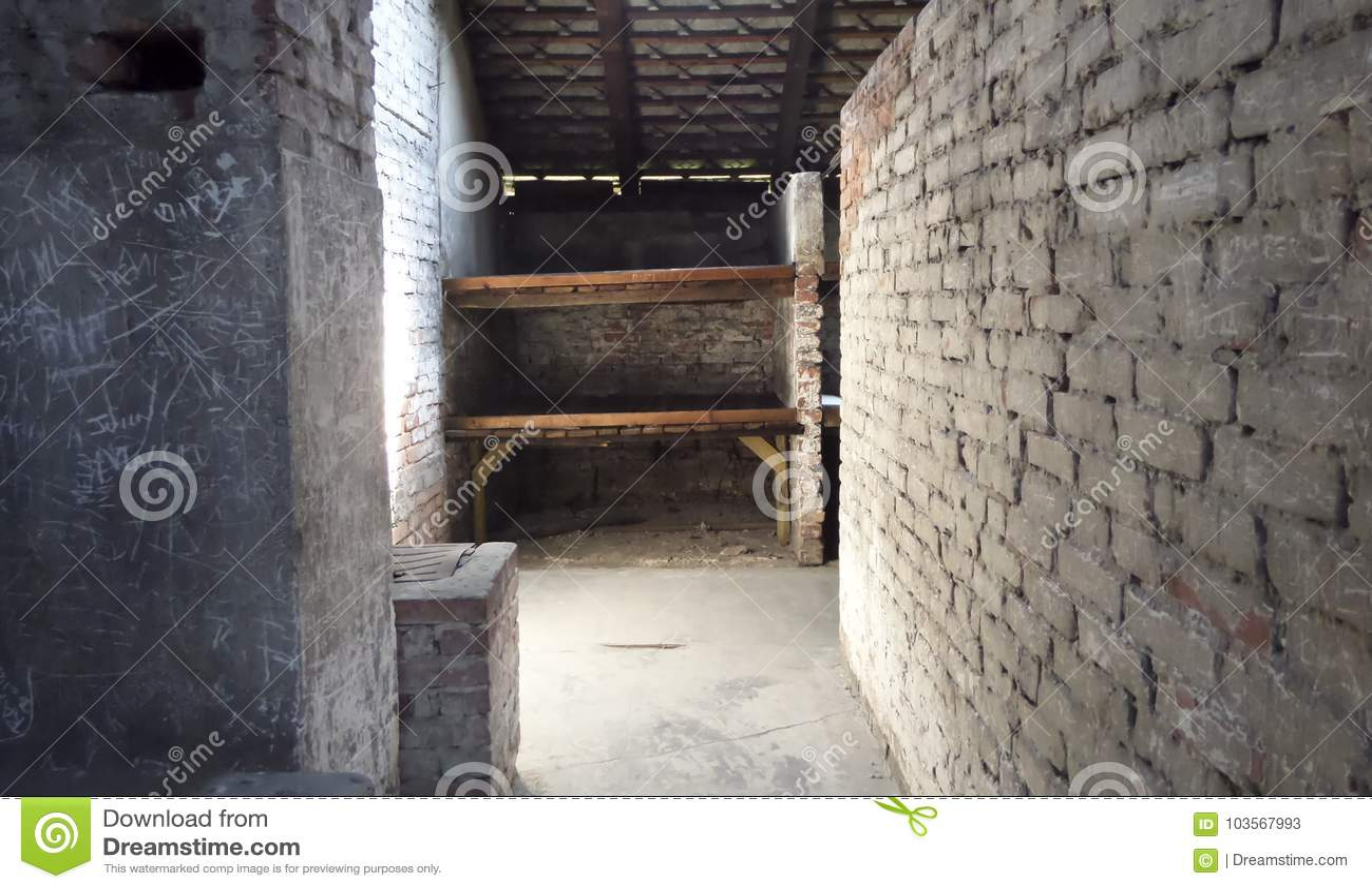 Auschwitz II - Birkenau, barrack - July 6th, 2015 - Krakow, Poland