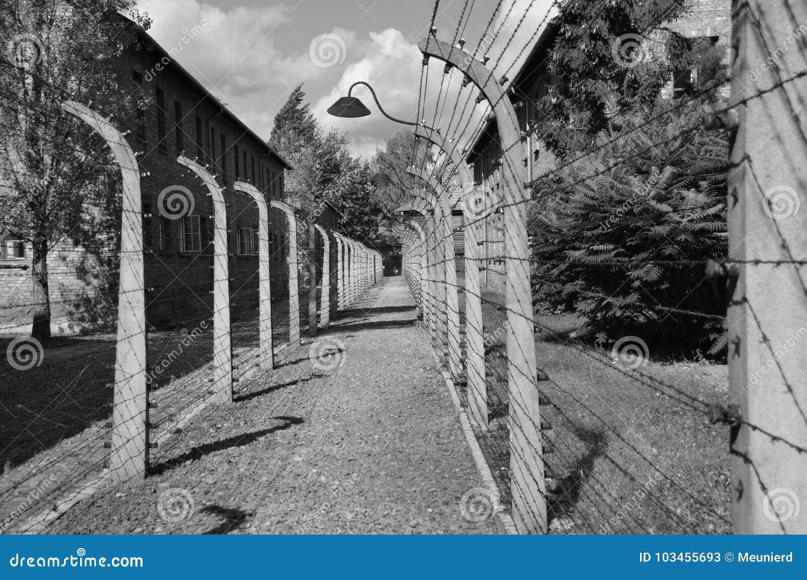 Auschwitz koncentracyjnego obozu ogrodzenia