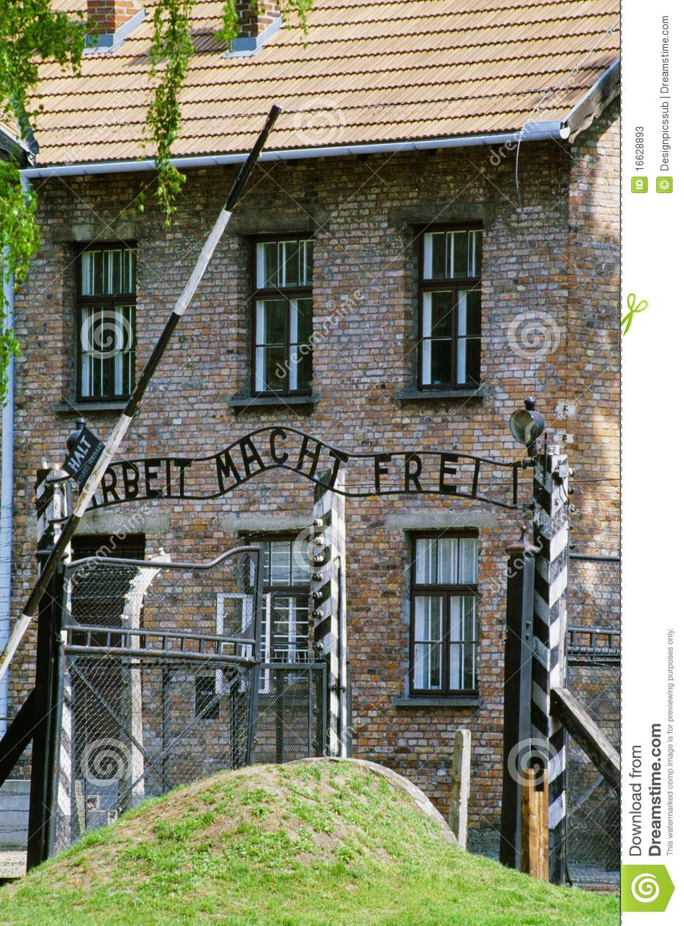 An introduction to the issue of the torture campy in auschwitz
