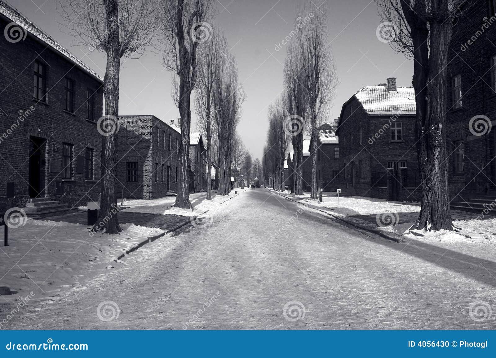 Auschwitz no inverno