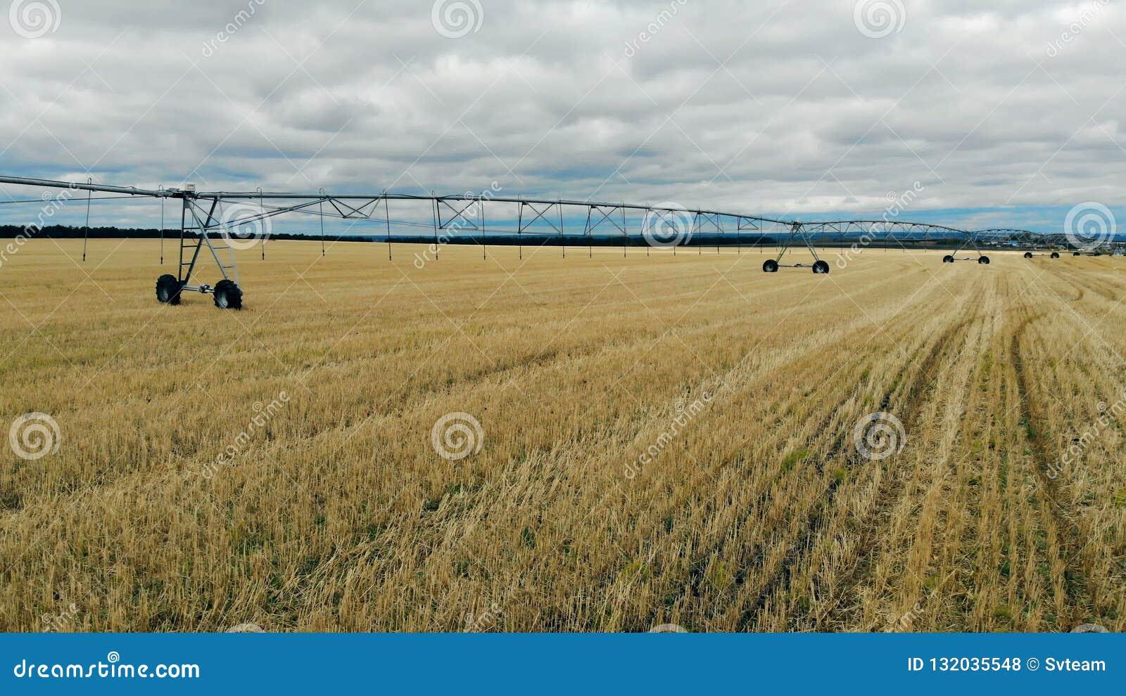 Aussaatfläche mit einem Bewässerungsmechanismus stellte ihn ein stock video