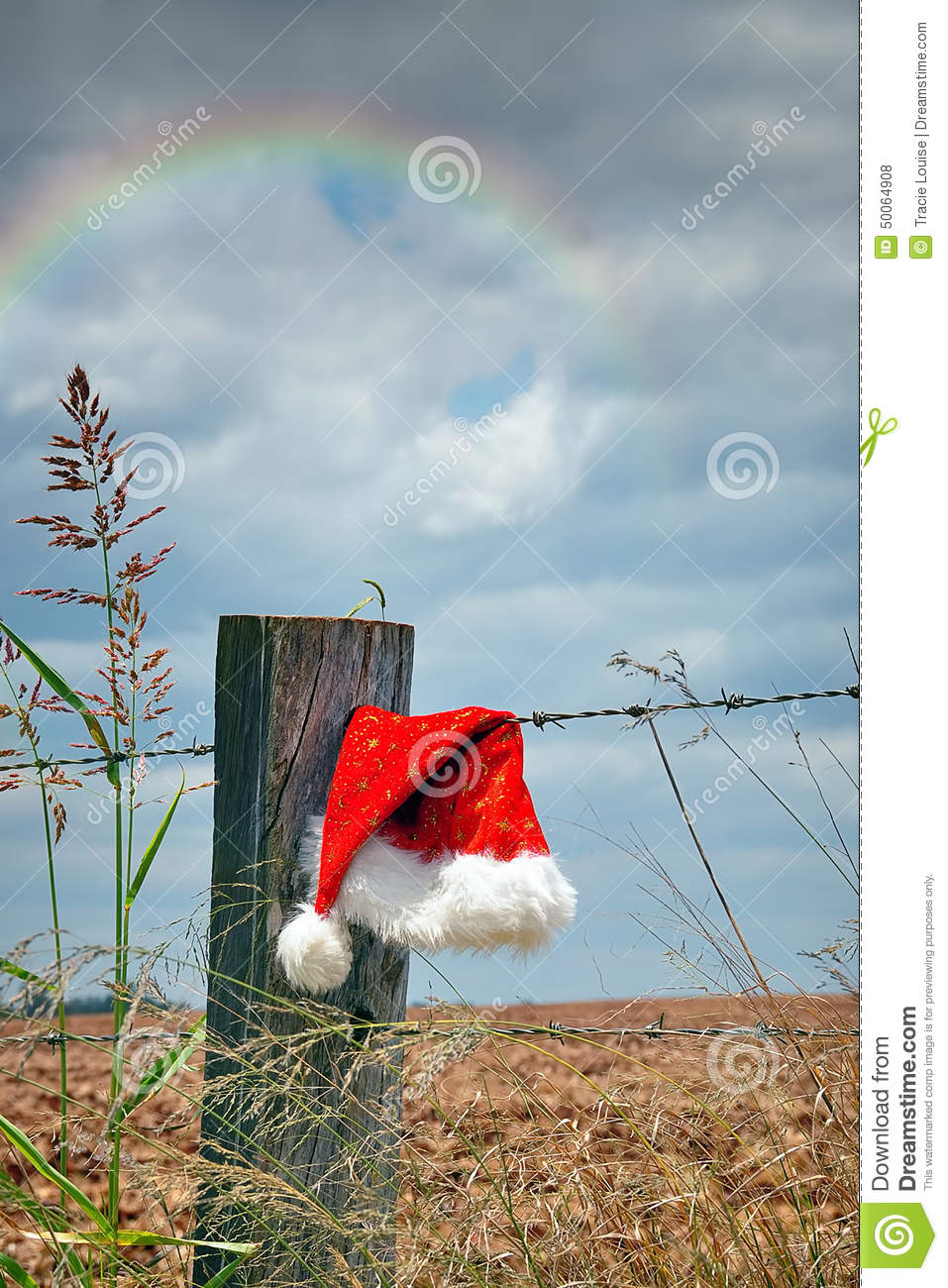 Aussie Christmas stock photo. Image of yule, rainbow ...