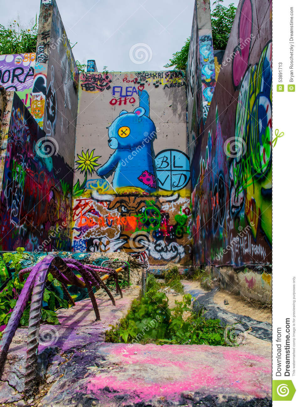 Austin Texas Graffiti Wall Longhorn Blue Bear Abstract Art