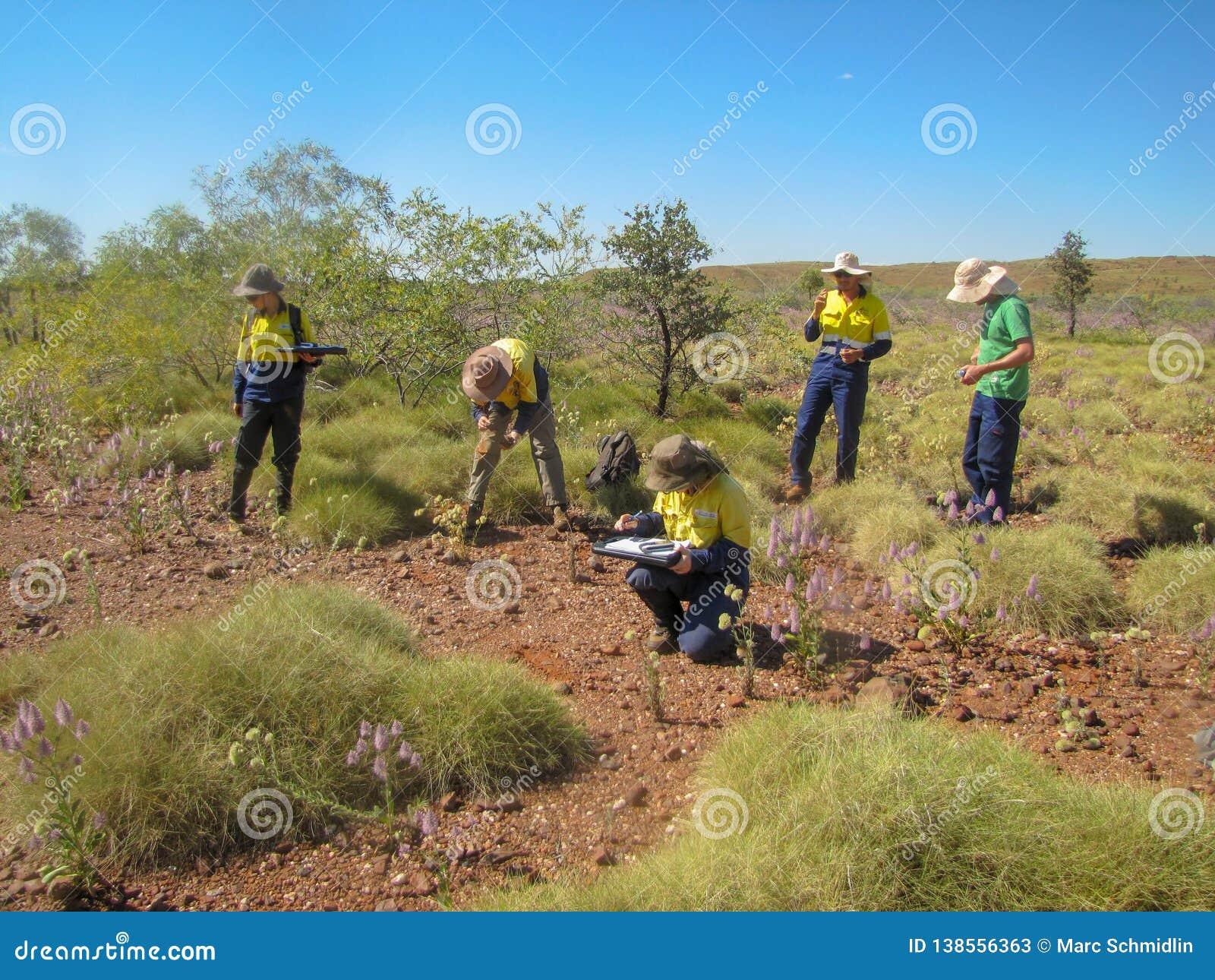 Austrália, Pilbara 2011, avaliação da arqueologia