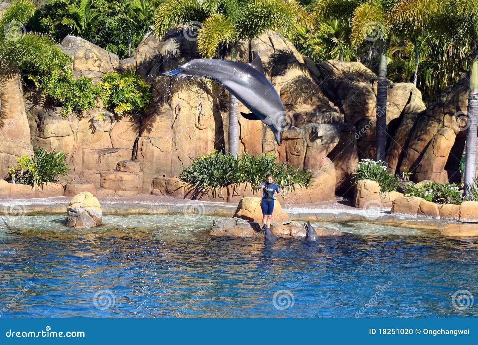 Sea world performer??