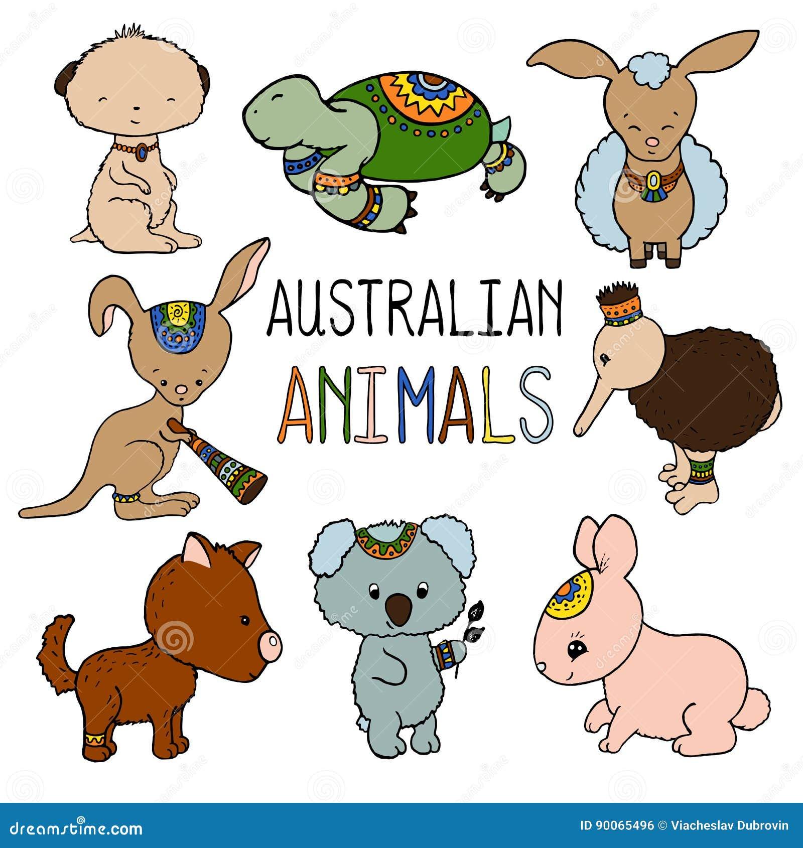 Australian Animals Colorful Illustration On White ...