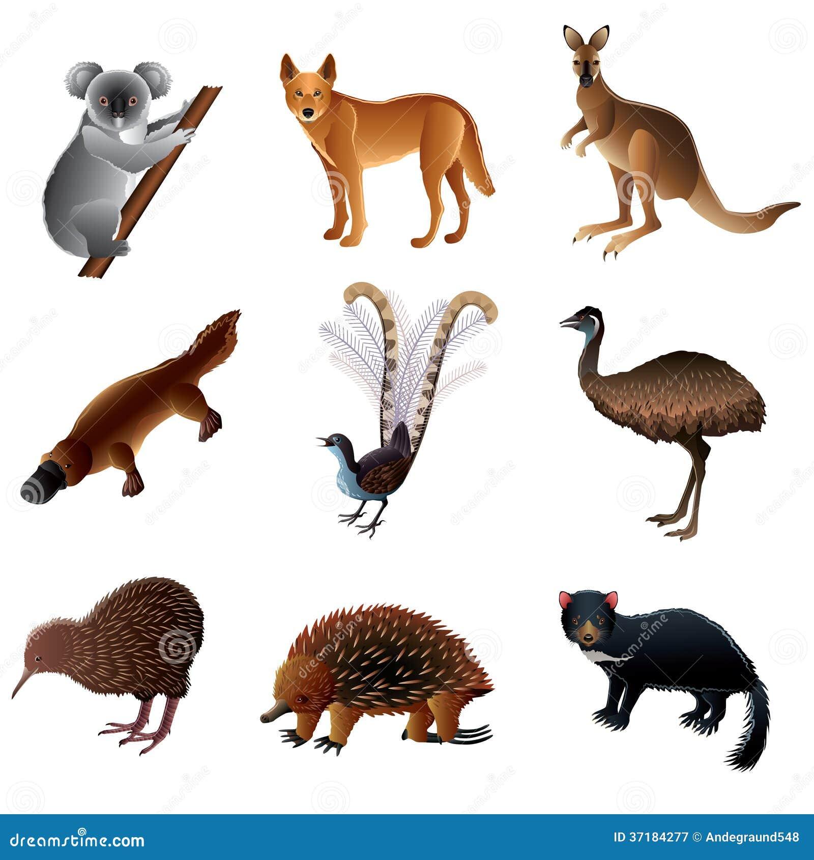 Clipart Australian Animals Free