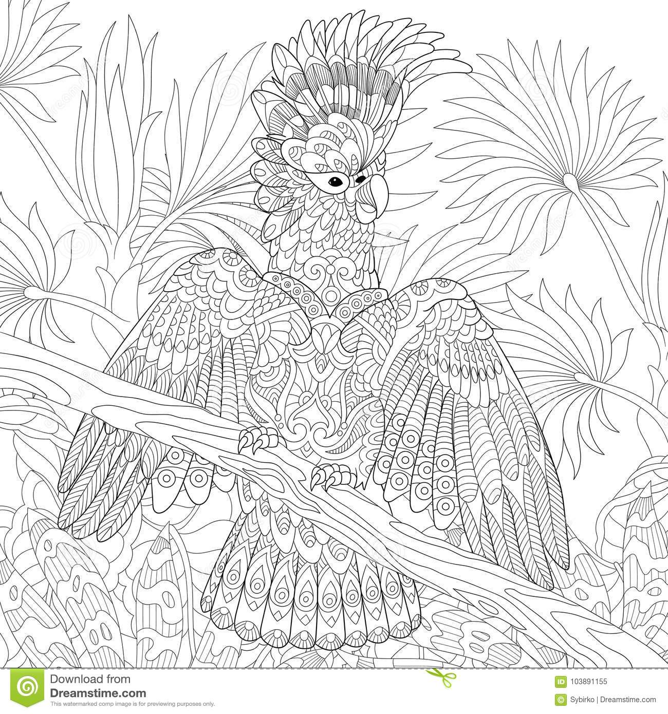 Rainforest - Coloring Pages For Kids | 1390x1300