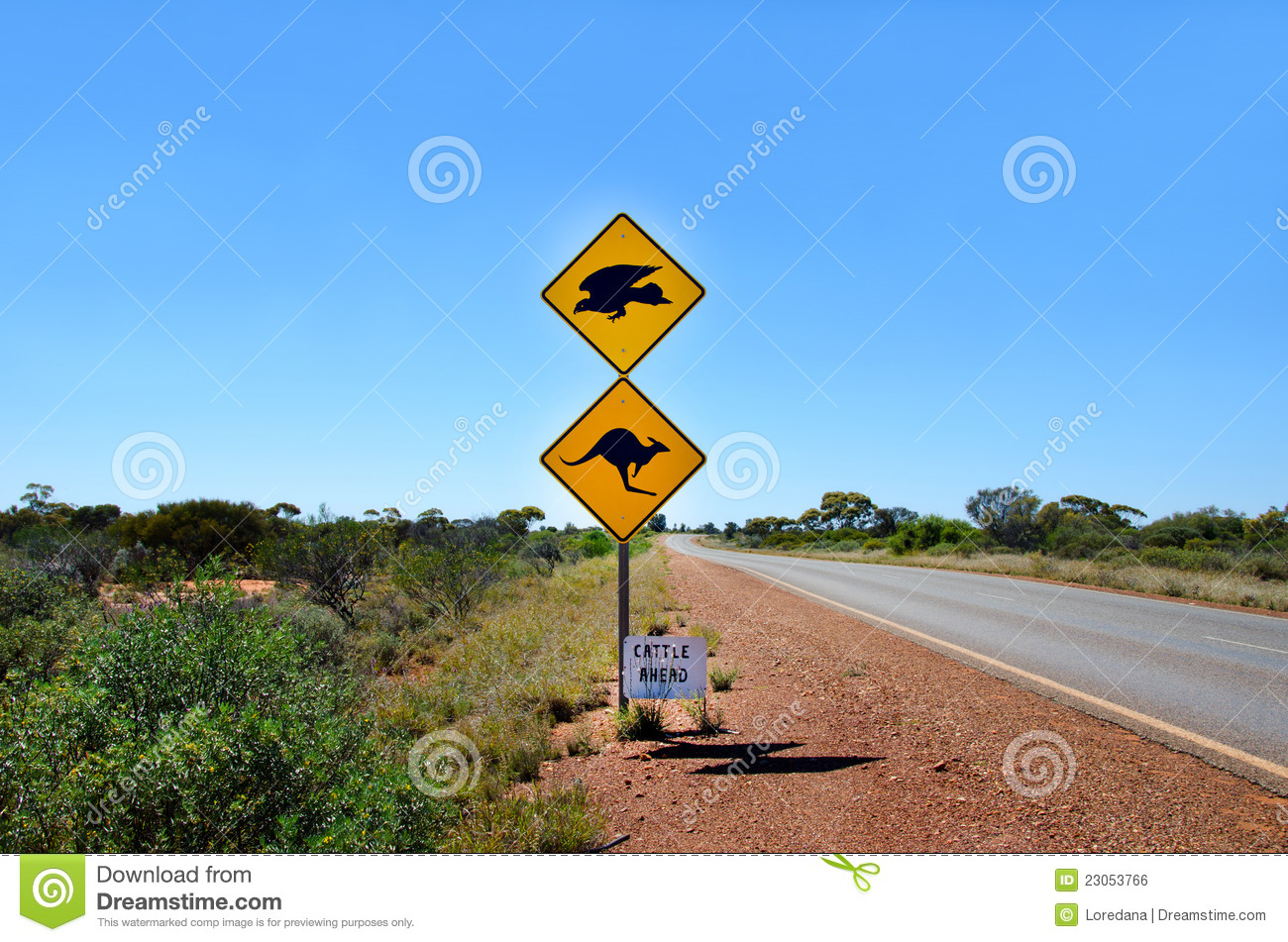 australian-kangaroo-eagle-warning-sign-s-23053766.jpg