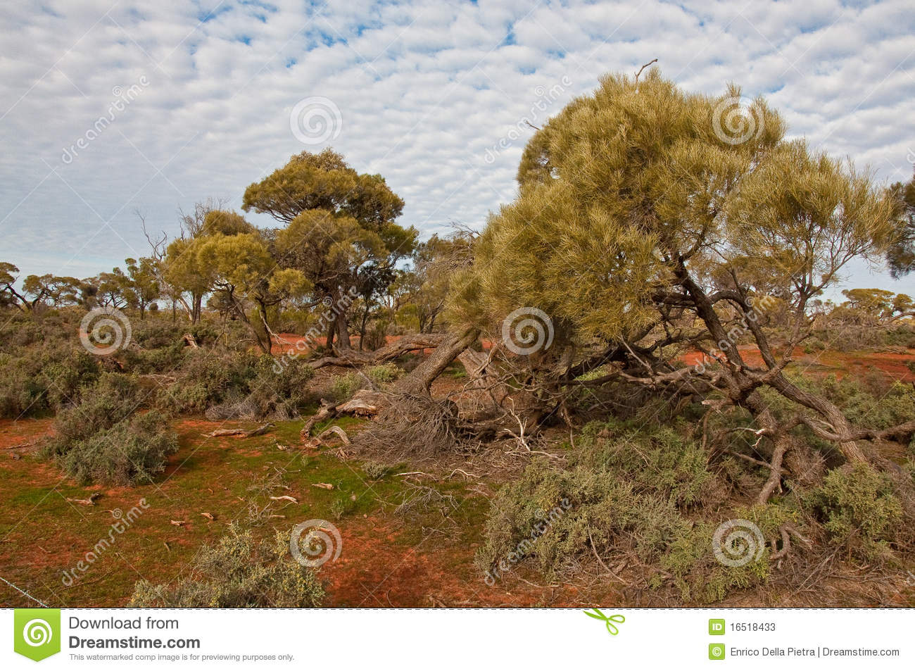 The australian landscape stock photos image 16518433 for Landscapers adelaide south