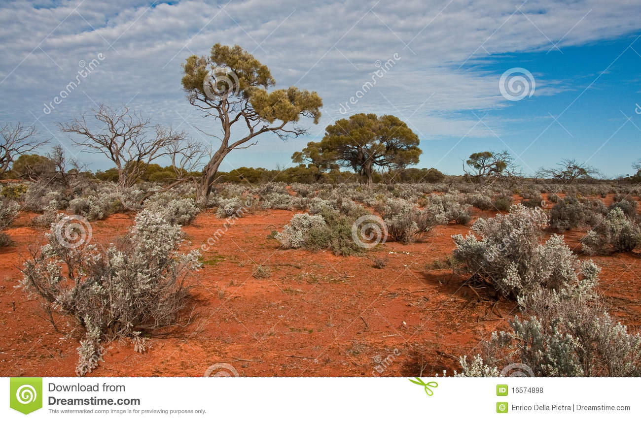 The australian landscape royalty free stock photos image for South australia landscape