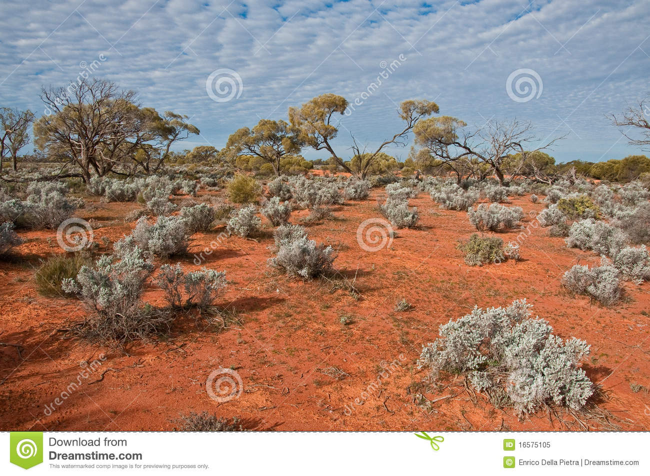 The australian landscape royalty free stock photo image for Landscapers adelaide south