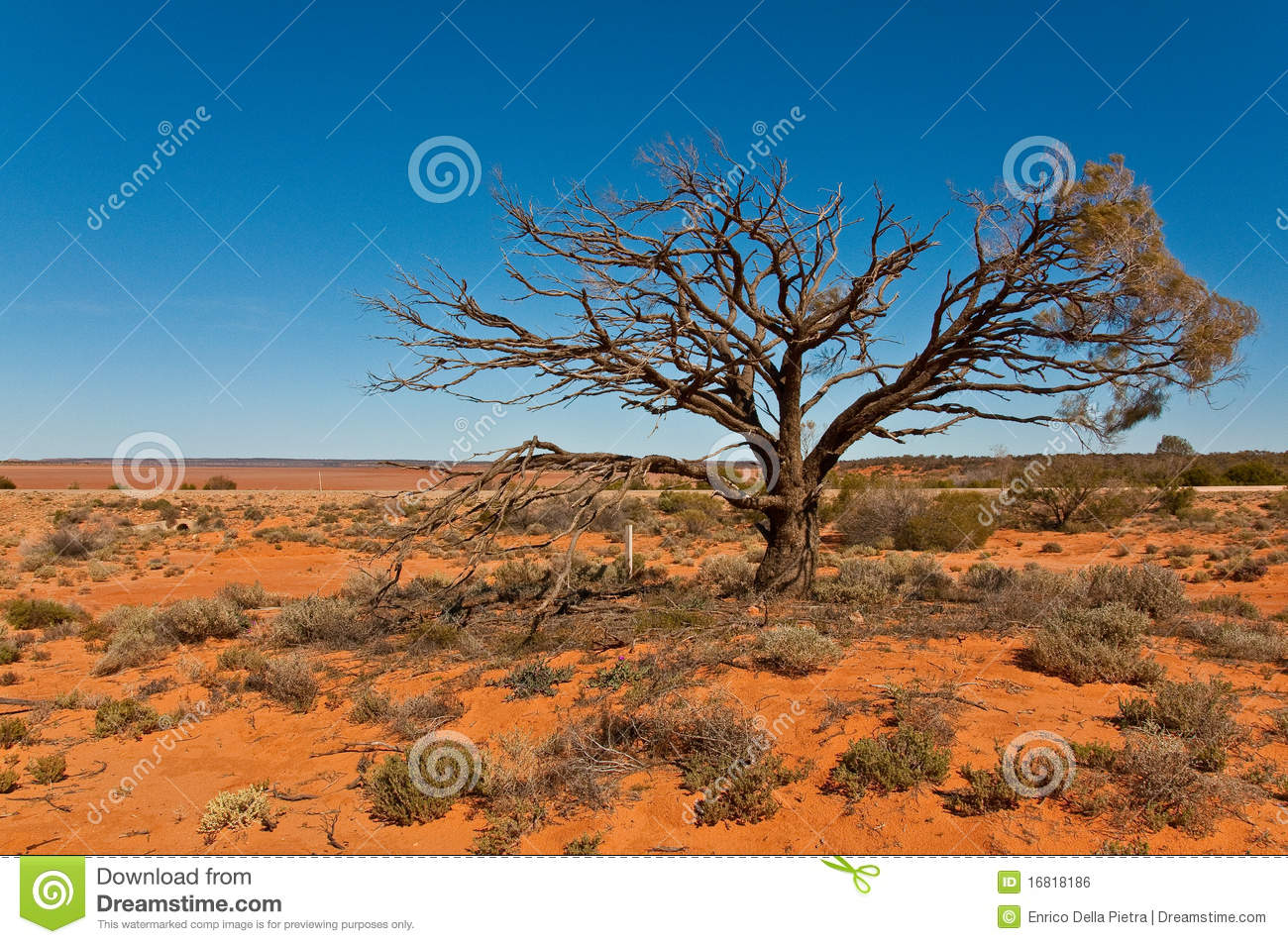 Australian landscape royalty free stock image image for Landscapers adelaide south