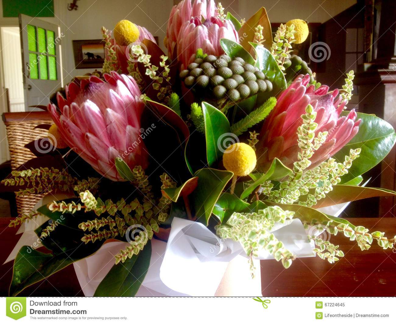 Australian native floral bouquet stock image image 67224645 - Flowers native to greece a sea of color ...