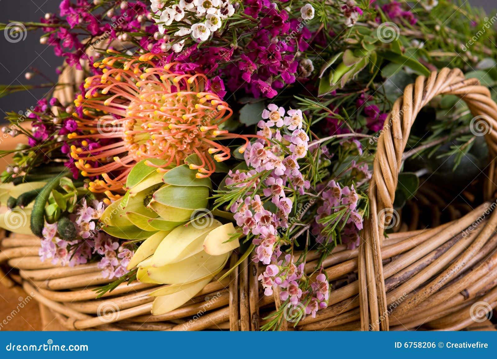 Australian Native Flower Bouquet Stock Photo Image Of Wildflowers
